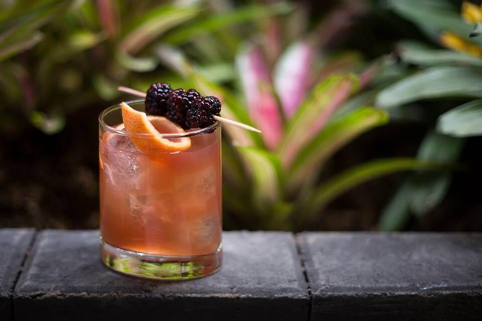 El -carnívoro- tiene whisky, jugo de naranja, oporto y ginger (decoración con pomelo y blueberrys)